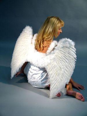 Engelsflügel groß 65x80cm Christkind Engel Weihnachten