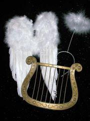 Set Engelsflügel Harfe und Heiligenschein Nikolaus Weihnachten